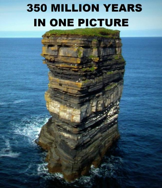 350-million-years-in-one-picture.jpg