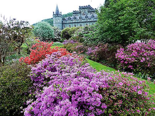 Inveraray Castle (7).jpg