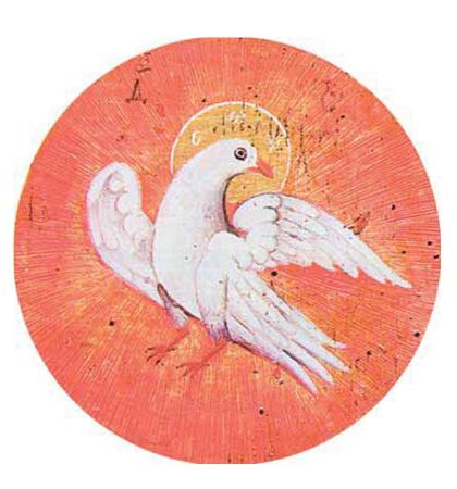 гълъб на мира 2.png