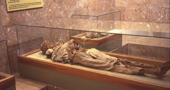 mummy_1a.jpg.6f224cf34768241ee59c8dc34a2db028.jpg