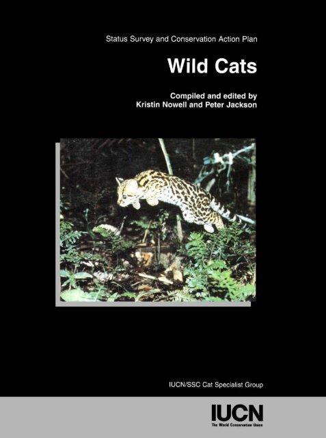 wild-cats-status-survey-and-conservation-action-plan-carnivore.jpg.266a40044eadfacbd274427e2314303a.jpg