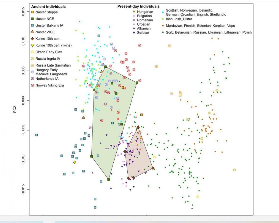 Serbian Clusters.jpg